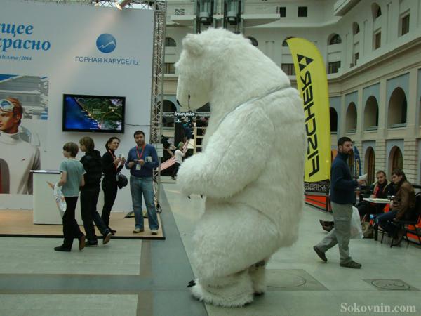 Медведь на Лыжном Салоне