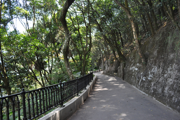 Прогулка по Пику Виктория