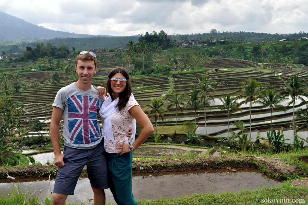 На рисовых плантациях