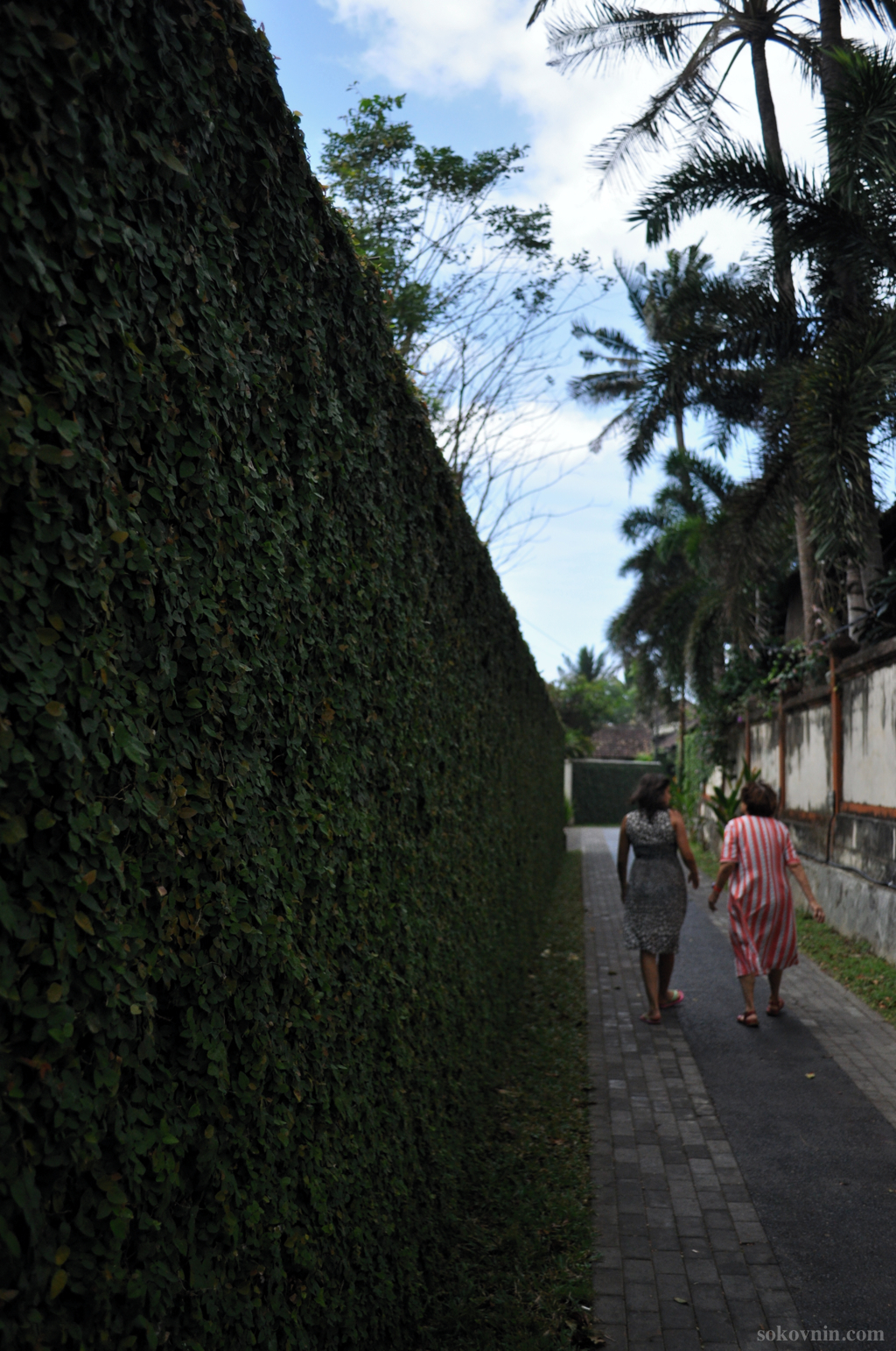 Окрестности Виллы Kishi-Kishi на Бали