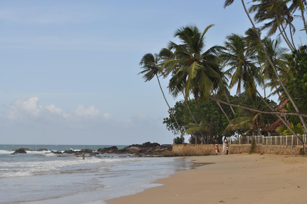 Пляж в отеле Dickwella Resort