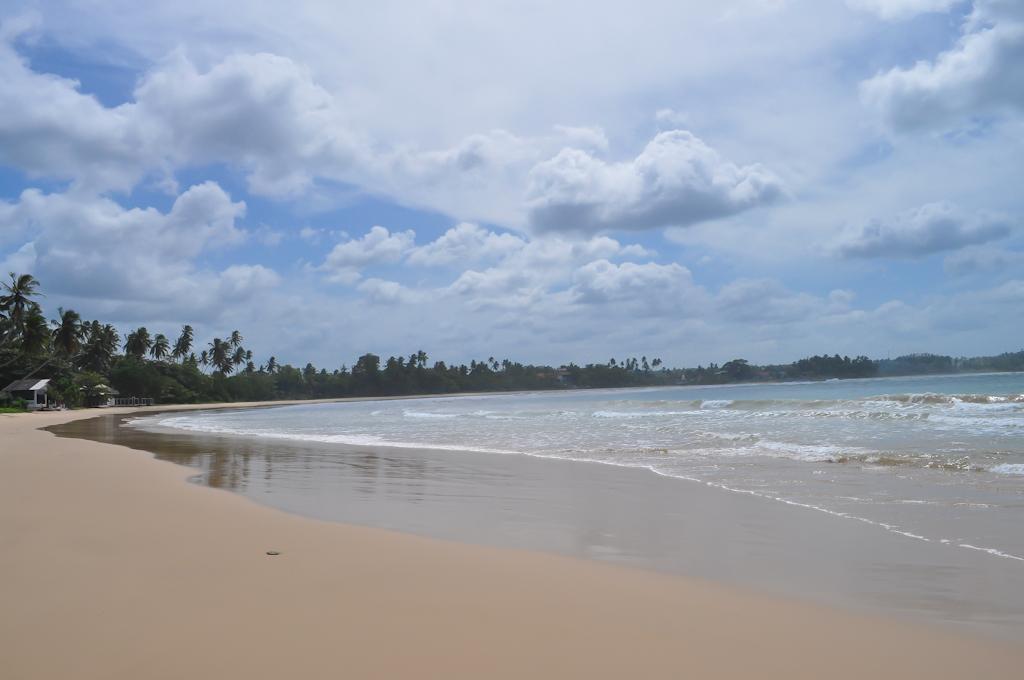 Пляж у отеля Dickwella Resort
