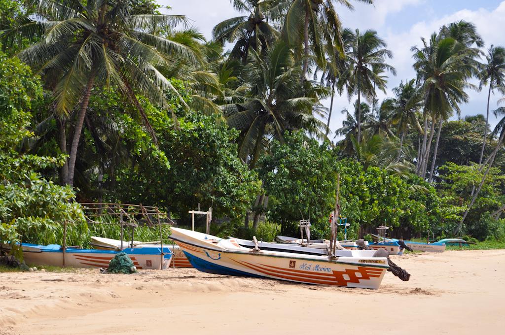 Лодки на берегу пляжа в Шри-Ланке