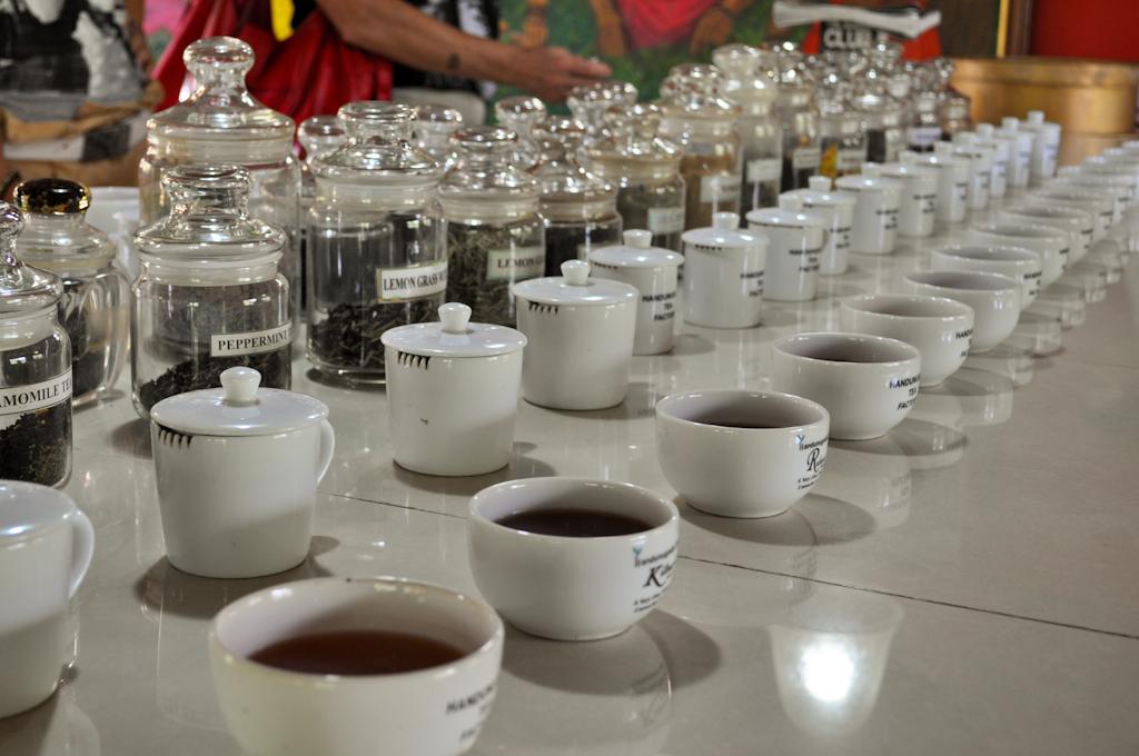 Дегустация чая на Шри-Ланке