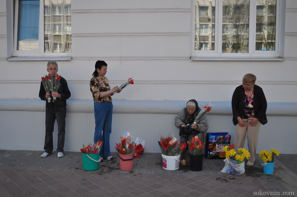 Продажа цветов в Витебске