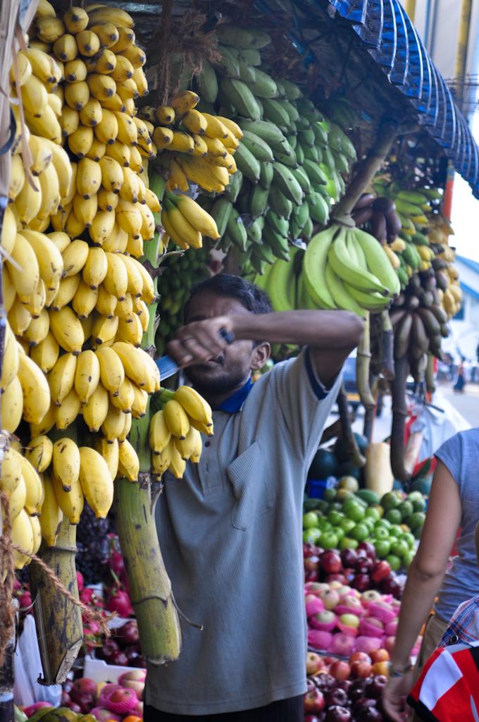 Маленькие бананы на Шри-Ланке