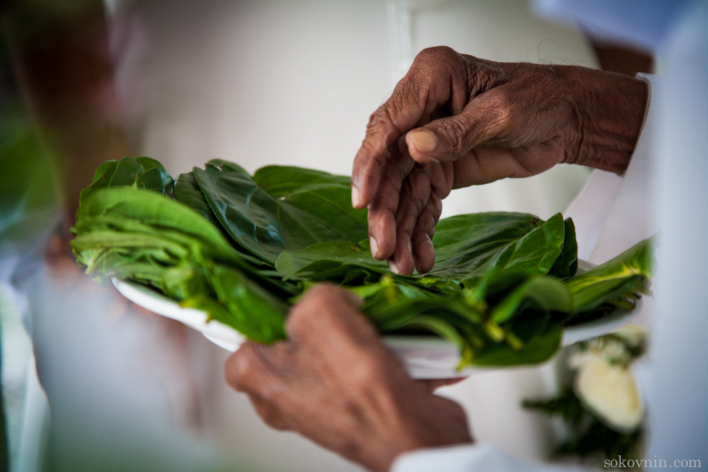Свадебный обычай на Шри-Ланке
