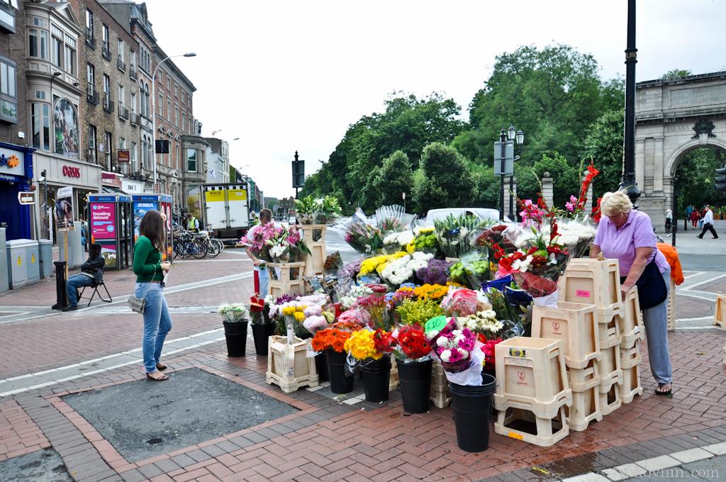 Продажа цветов в Дублине