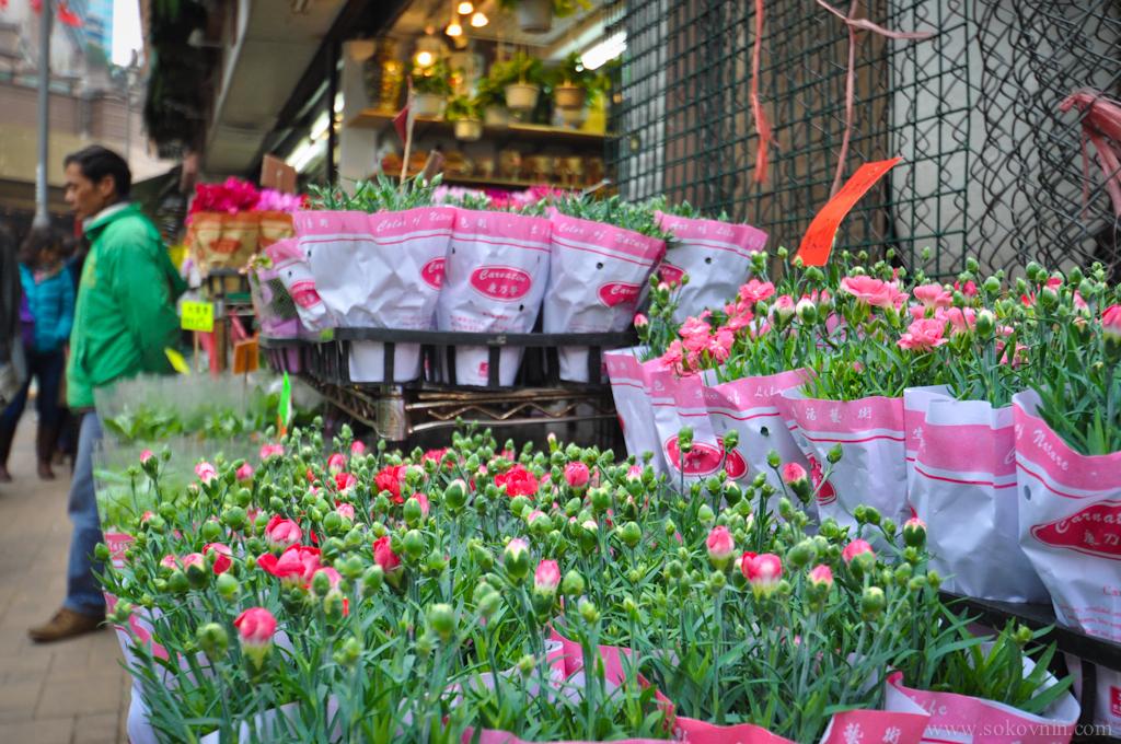 Цветы в Гонконге