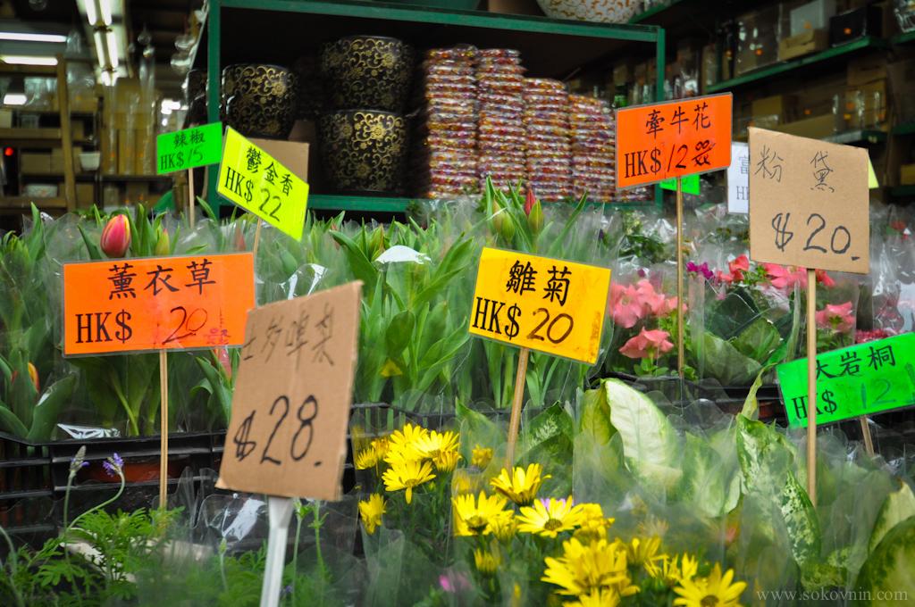 Цены на цветы в Гонконге