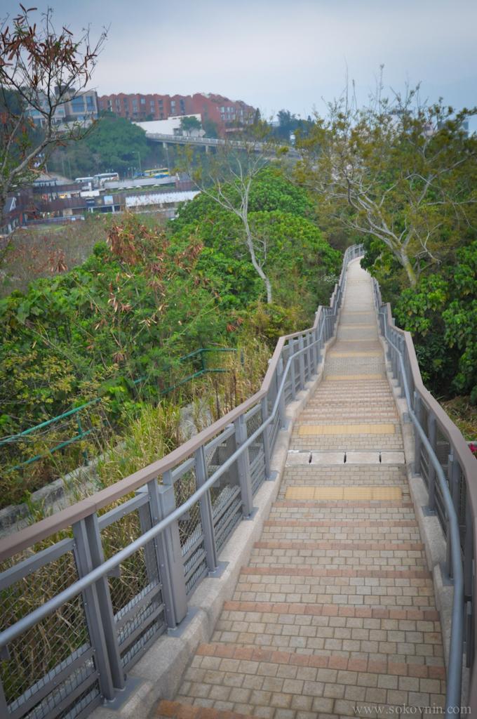 Гонконг создан для пешеходных прогулок