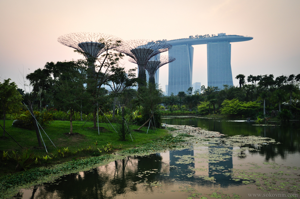 Gardens by the bay рядом с Marina Bay Sands