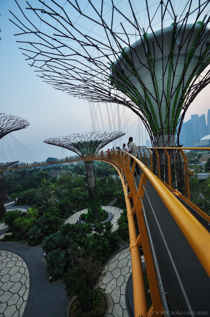 Мост SkyWay в Сингапуре