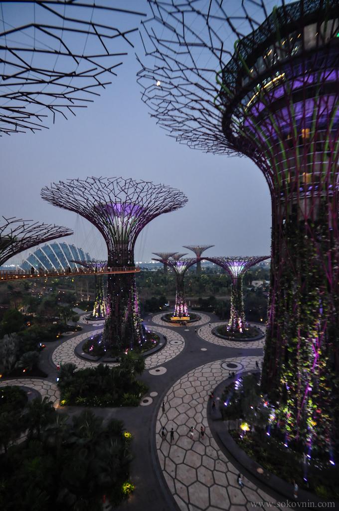 Световое шоу Gardens Rhapsody