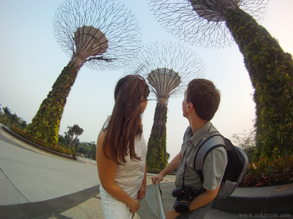 Деревья Gardens by the Bay в Сингапуре