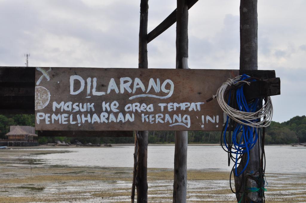 Надпись на индонезийском