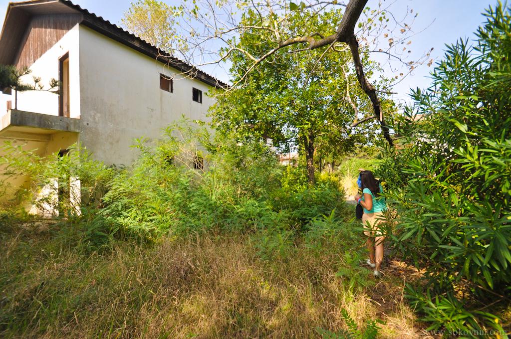 Заросли, заброшенные дома на Ада Бояне