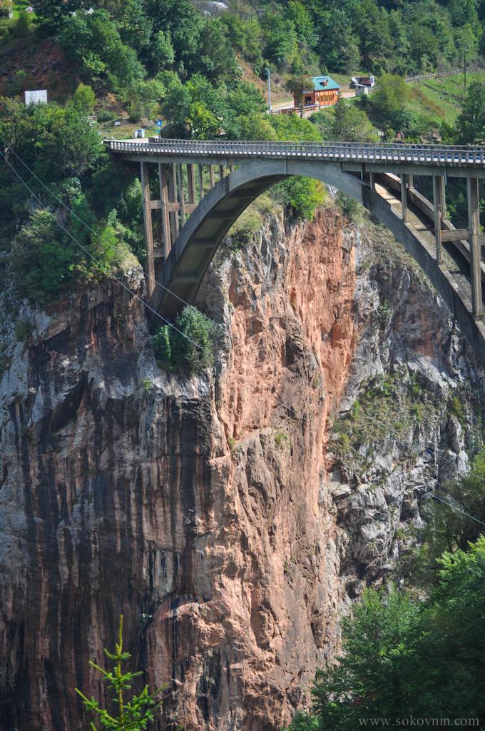 Фотография моста Джурджевича