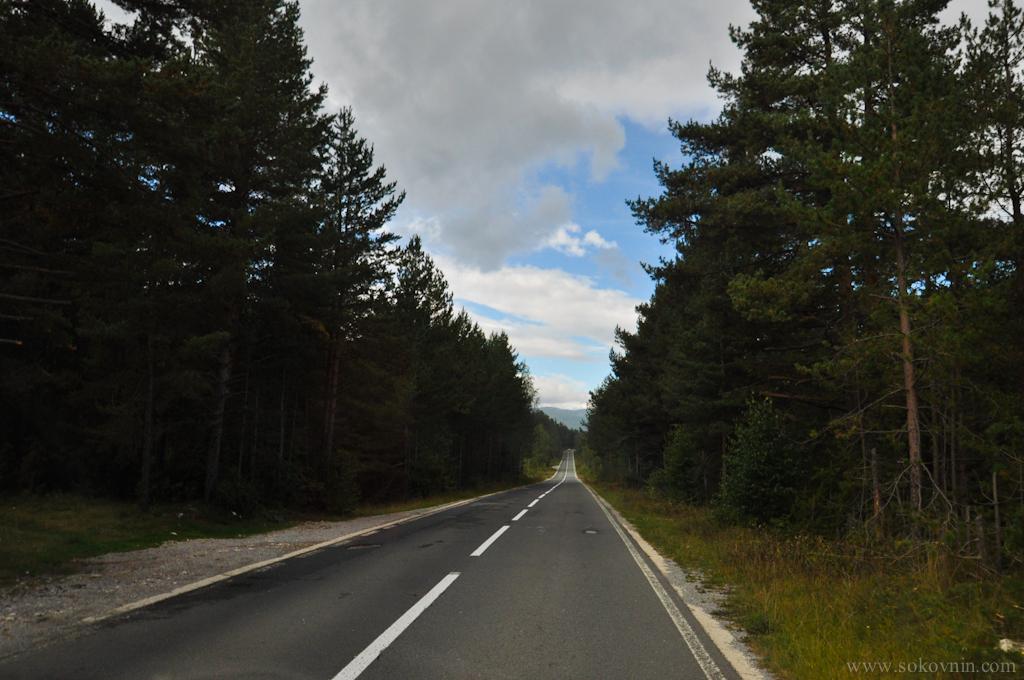 Дорога в Черногории