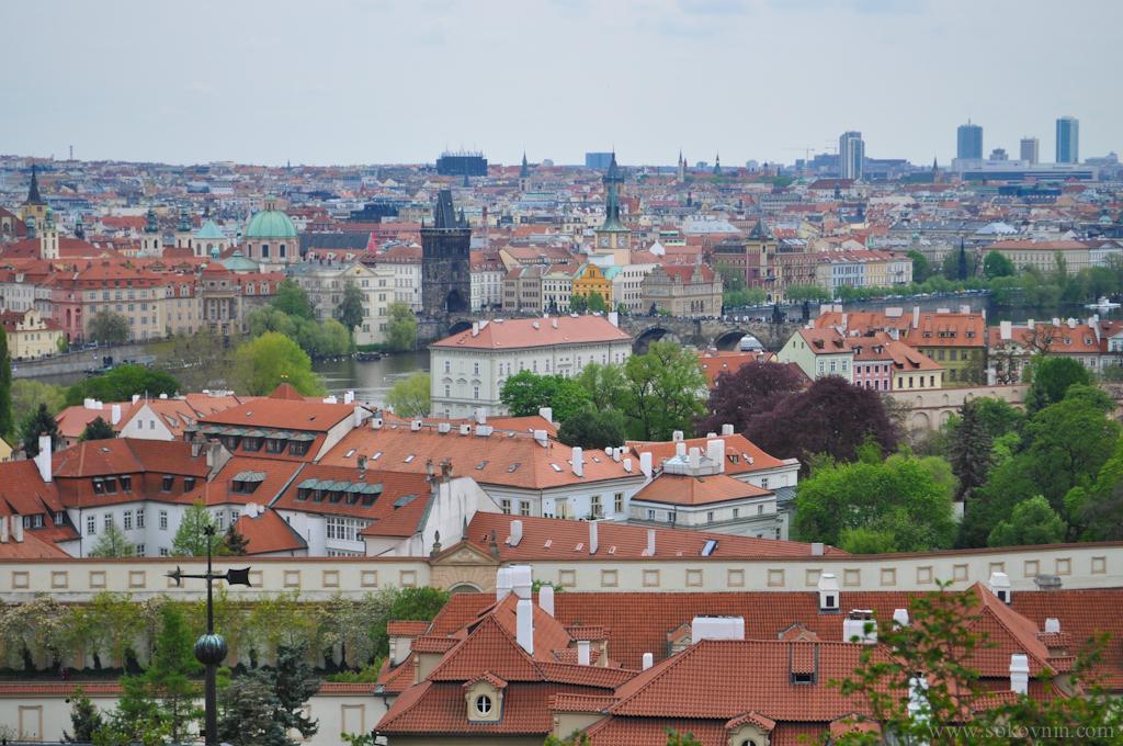 Красные крыши в Праге